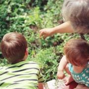 avos pagam pensão alimenticia aos netso (1)